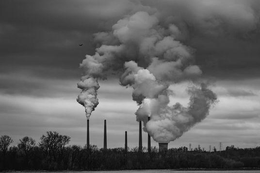Những thuật ngữ về môi trường liên quan tới carbon