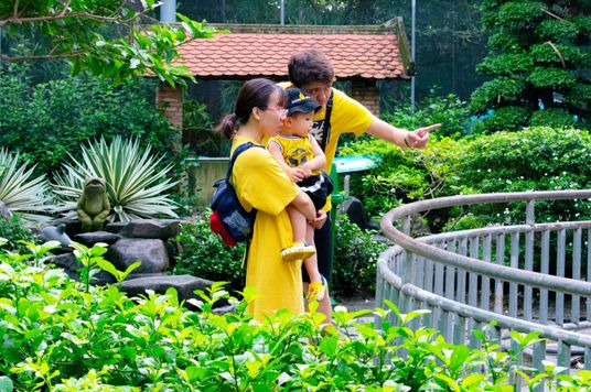Nature Over Urbanization: Vietnam Seeks To Add More Green Space