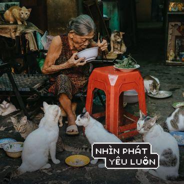 Nhiếp ảnh gia Tín Phùng và tính sinh động của khoảnh khắc
