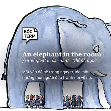 Bóc Term: An elephant in the room là gì? Vì sao bạn chọn 'ngó lơ' chuyện hệ trọng?