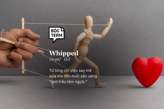Bóc Term: Whipped - Vì yêu nên cứ đâm đầu