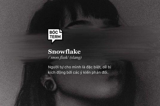 Bóc Term: Snowflake – Khi con người dễ dàng bị kích động
