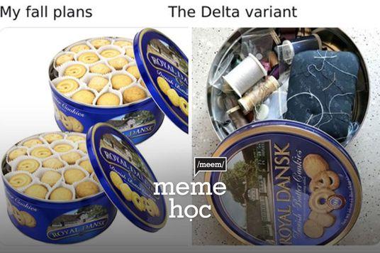 Meme Học: My fall plans và The Delta variant - khi nhìn đâu cũng dang dở!