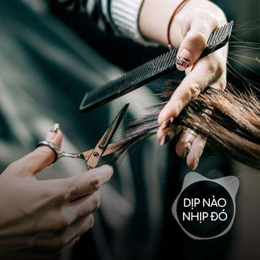 Dịp Nào Nhịp Đó: Khi đi làm tóc