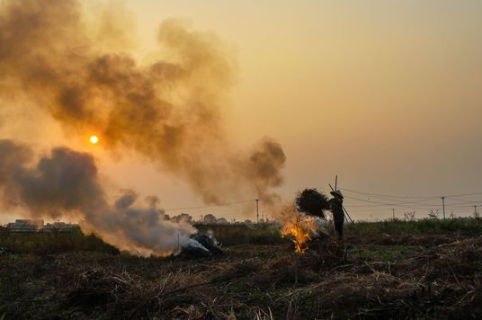Vietnam's 'Airpocalypse' Causing 60,000 Deaths, Economic Loss