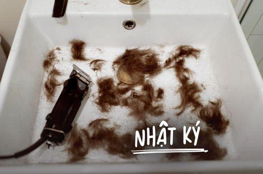 Không đi cắt tóc được thì mình... tự cắt tóc thôi!