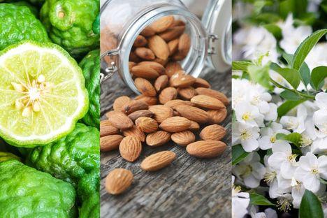 5 Nốt hương khiến bạn vui hơn khi ở nhà
