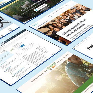 """6 Trang web """"chống rảnh rỗi"""" cho các công dân toàn cầu"""