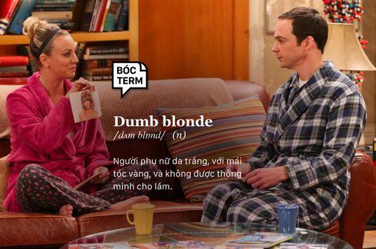 Bóc Term: Dumb Blonde - Vàng hoe ngu ngốc