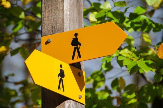 Học cách tư duy phản biện từ sự hỗn loạn và ngờ vực