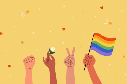 """Cộng đồng LGBT+: Khi việc bảo vệ quyền lợi bị gắn mác """"làm quá"""""""